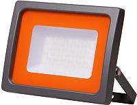 Прожектор JAZZway PFL-SC 6500К (5004887) -