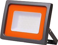 Прожектор JAZZway PFL-SC 6500К (5004863) -