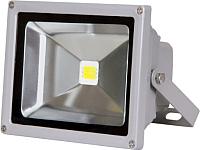 Прожектор JAZZway PFL-RGB-C/GR (1005892) -