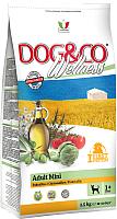 Корм для собак Adragna Dog&Co Wellness Mini Adult Chicken&Rice (2.5кг) -