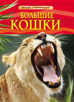 Энциклопедия Росмэн Большие кошки
