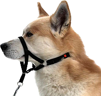 Недоуздок Trixie Top Trainer Training Harness 13005 (L/XL) -