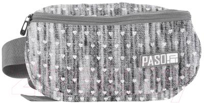 Сумка на пояс Paso PPMM19-510