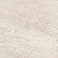 Плитка Netto Gres Dyna Silver Polished (600x600) -