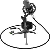 Микрофон Ritmix RDM-160 (черный) -