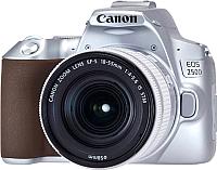 Зеркальный фотоаппарат Canon EOS 250D Kit EF-S 18-55mm IS STM / 3461C001 (серебристый) -