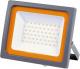 Прожектор JAZZway 5005167 -
