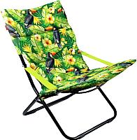 Кресло складное Ника Haushalt / ННК4Р/T (тукан) -