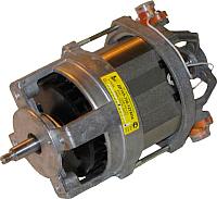 Электродвигатель для измельчителя Fermer ДК105-370-8 (УХЛ 4-1) -