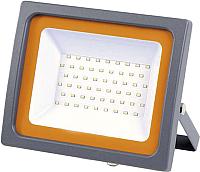 Прожектор JAZZway 5010079 -