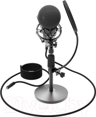 Микрофон Ritmix RDM-175 (черный)