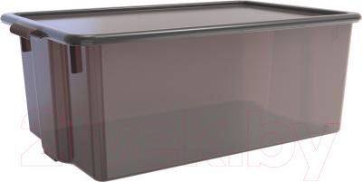Контейнер для хранения Berossi Porter ИК 30083000 (грозовое небо)