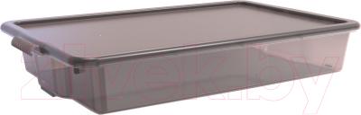 Контейнер для хранения Berossi Porter ИК 30583000 (грозовое небо)
