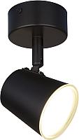 Спот Elektrostandard DLR025 5W 4200K (черный матовый) -