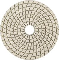 Шлифовальный круг Trio Diamond 350300 -