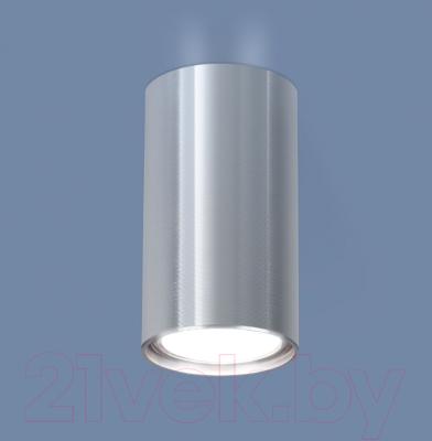 Точечный светильник Elektrostandard 1081 GU10 SCH