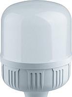 Лампа Navigator 61 481 NLL-T120-40-230-840-E40 -