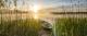 Картина Orlix Лодка в камышах / CA-12440 -