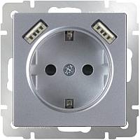 Розетка Werkel WL06-SKGS-USBx2-IP20 / a033474 (серебристый) -