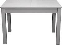 Обеденный стол Мебель-Класс Аквилон (серый) -