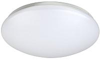 Потолочный светильник ЭРА Элемент / Б0032254 -