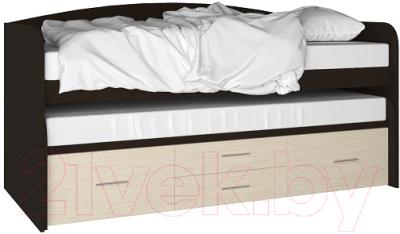 Двухъярусная кровать Артём-Мебель СН 108.02 (сосна/венге)
