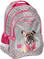 Школьный рюкзак Paso PES-181 -