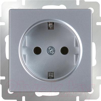 Розетка Werkel WL06-SKG-01-IP20 / a029828 (серебристый)