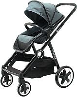Детская прогулочная коляска Babyzz Dynasty (серый) -