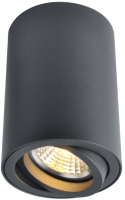 Точечный светильник Arte Lamp Sentry A1560PL-1BK -