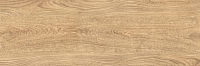 Плитка Керамин Шиен 6 (750х250) -