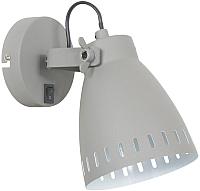 Спот ETP HN5050-1K (серый) -