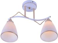 Потолочный светильник Mirastyle MX-1088/2 WH+FGD -