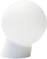 Светильник ЖКХ TDM SQ0314-0002 -