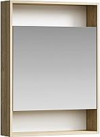 Шкаф с зеркалом для ванной Aqwella Сити 60 / SIT0406DB -