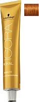 Крем-краска для волос Schwarzkopf Professional Igora Royal Absolutes 7-70 (60мл) -
