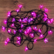 Светодиодная гирлянда Neon-Night Цветы сакуры 303-038 -