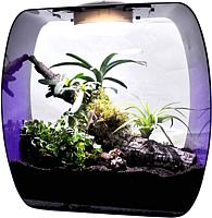 Террариум Lucky Reptile Life Box / LB-35P (фиолетовый) -