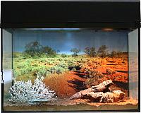 Террариум Lucky Reptile Стартовый комплект для гекконов / SK50DG-B (черный) -