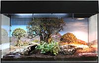 Террариум Lucky Reptile Стартовый комплект для сухопутных черепах / SK80TO-B (черный) -