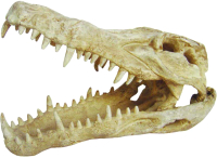 Декорация для террариума Lucky Reptile Skull Krokodil череп / DS-C -