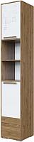 Шкаф-пенал SV-мебель Гарвард Ж с ящиком (гикори темный/белый) -