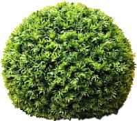 Искусственное растение Green Fly Самшит Крапива / С-15-40 -