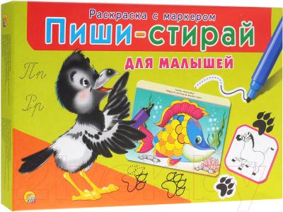 Раскраска РЫЖИЙ КОТ Пиши-стирай. Для малышей / РМ-1951