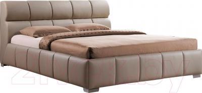Двуспальная кровать Signal Bolonia 160x200