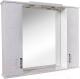 Шкаф с зеркалом для ванной Аква Родос Ассоль 100 / ОР0000064 -