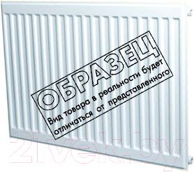Радиатор стальной Лидея ЛУ 11-310 300x1000