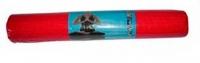 Коврик для йоги и фитнеса No Brand L173 (красный) -