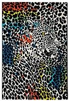 Ковер Lalee Maya 486 (160x230, лео) -