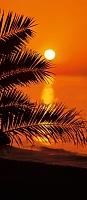 Фотообои Komar Sunset 2-1006 (97x220) -